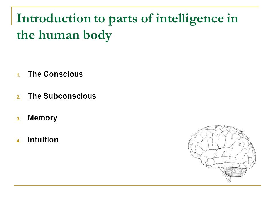 Introduction to parts of intelligence in the human body