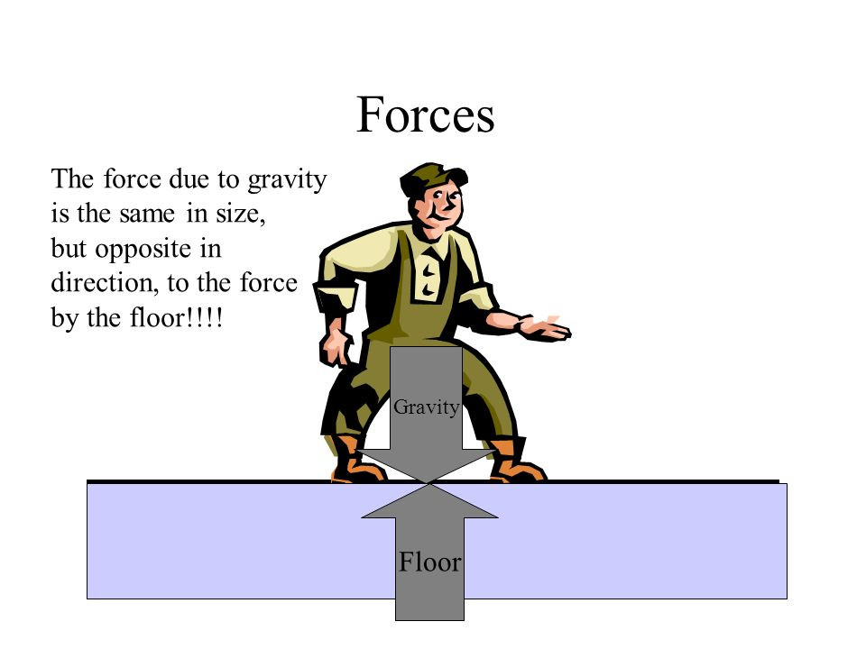 Forces The force due to gravity is the same in size, but opposite in