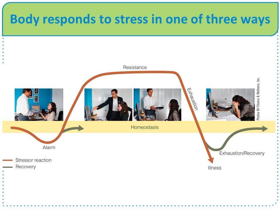 Body responds to stress in one of three ways