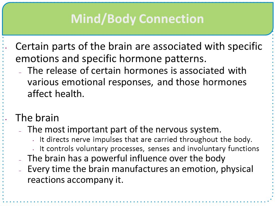 Mind/Body Connection Certain parts of the brain are associated with specific emotions and specific hormone patterns.