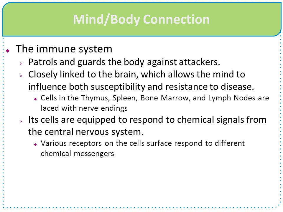 Mind/Body Connection The immune system