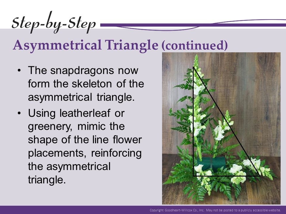 Asymmetrical Triangle (continued)