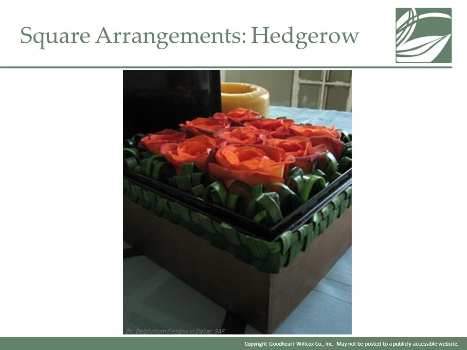 Square Arrangements: Hedgerow