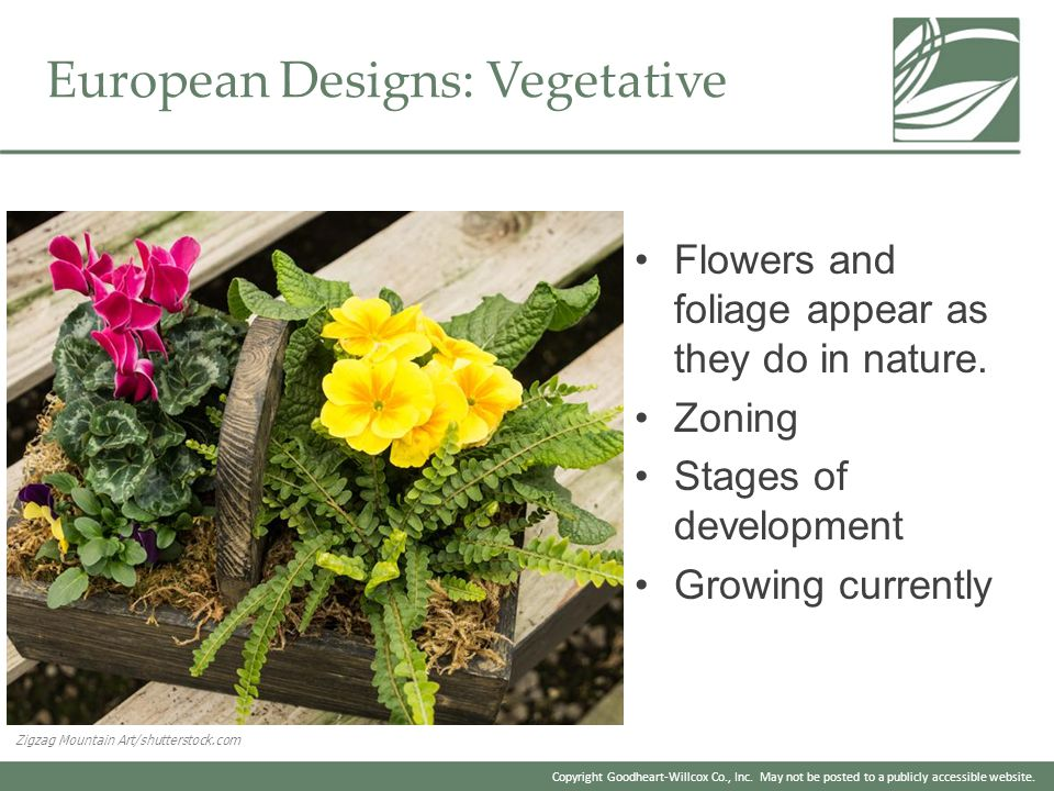 European Designs: Vegetative