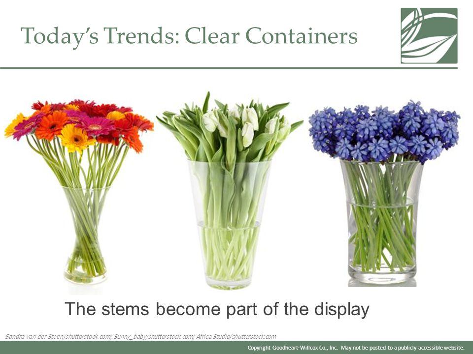 Today's Trends: Clear Containers