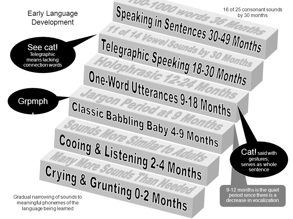Speaking in Sentences 30-49 Months