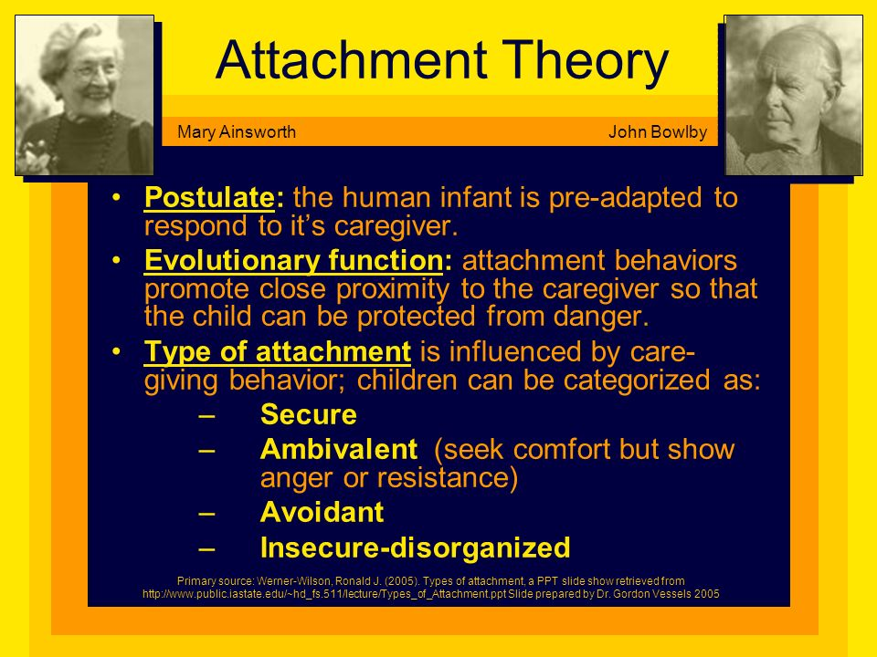 Attachment Theory Mary Ainsworth. John Bowlby. Postulate: the human infant is pre-adapted to respond to it's caregiver.