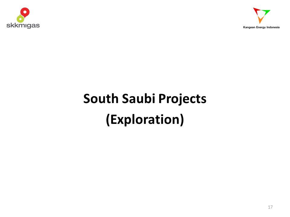 South Saubi Projects (Exploration)