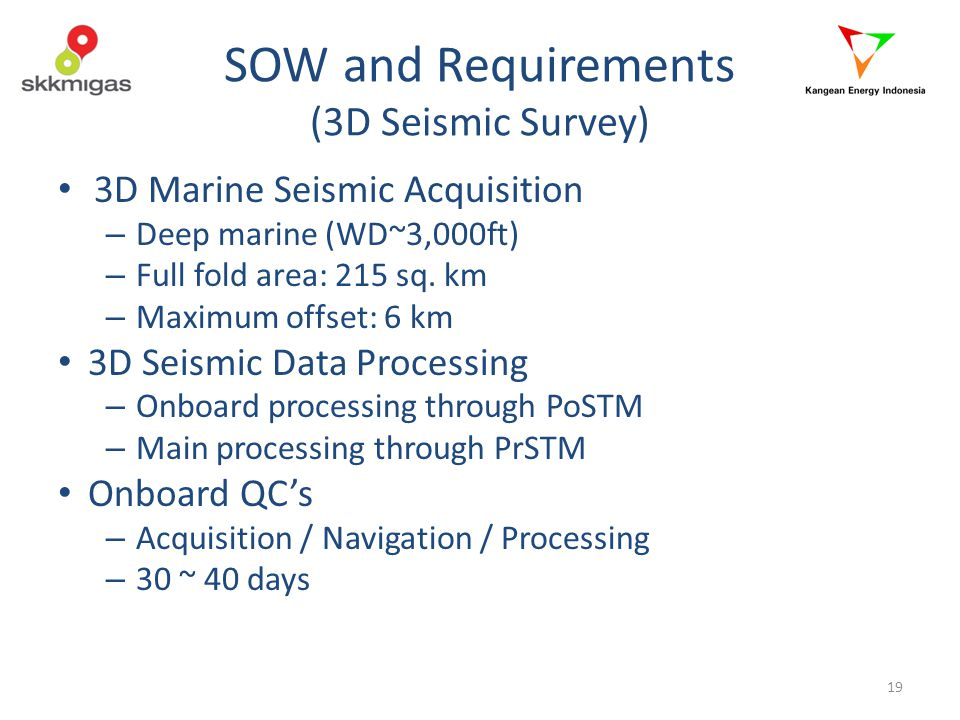 SOW and Requirements (3D Seismic Survey)