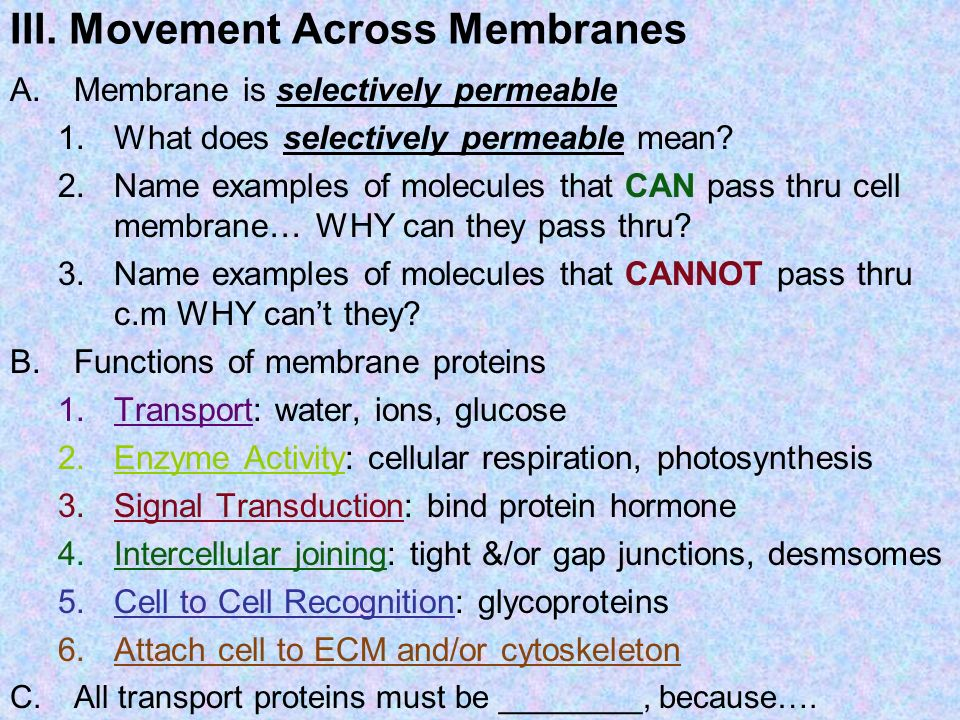 III. Movement Across Membranes
