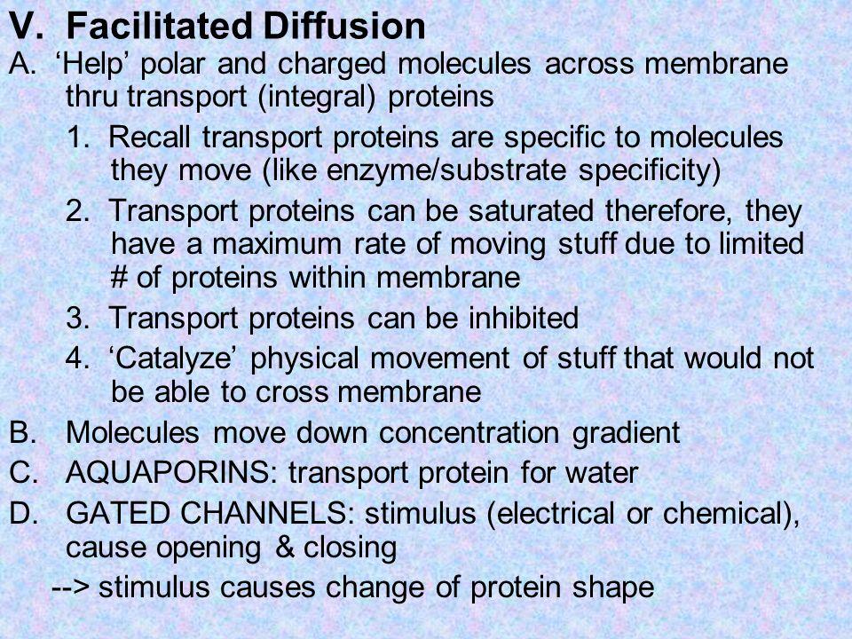 V. Facilitated Diffusion