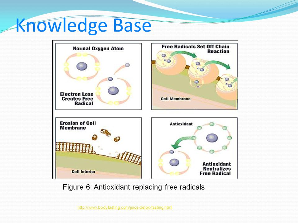 Knowledge Base Figure 6: Antioxidant replacing free radicals