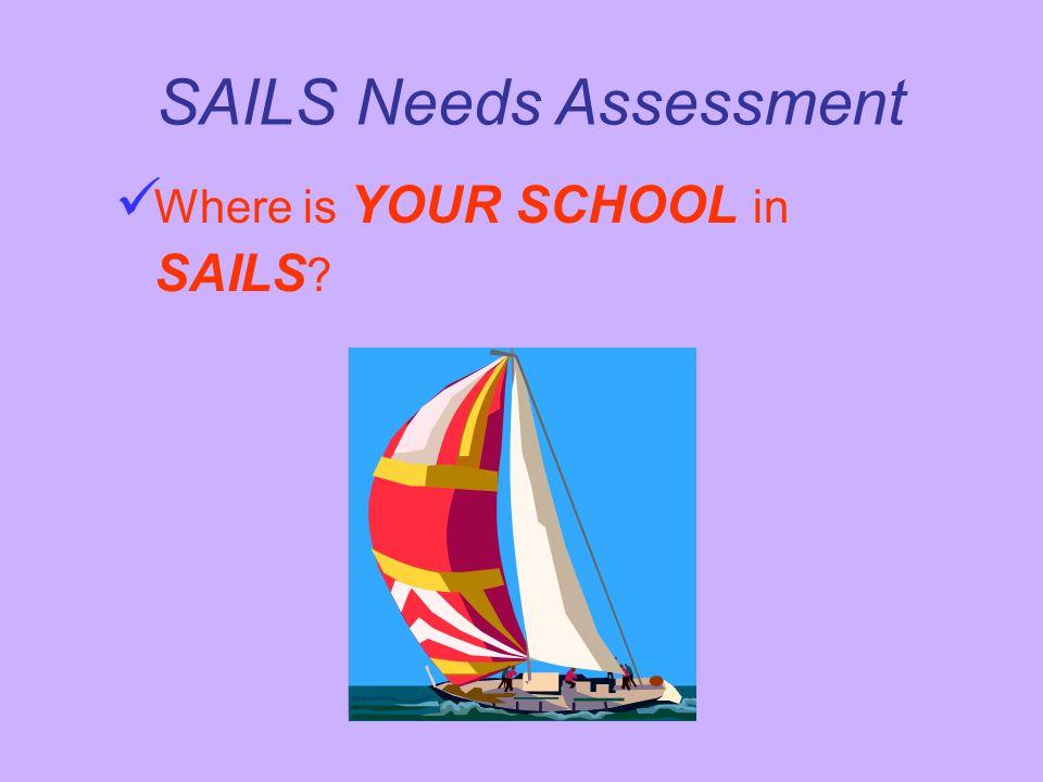 SAILS Needs Assessment