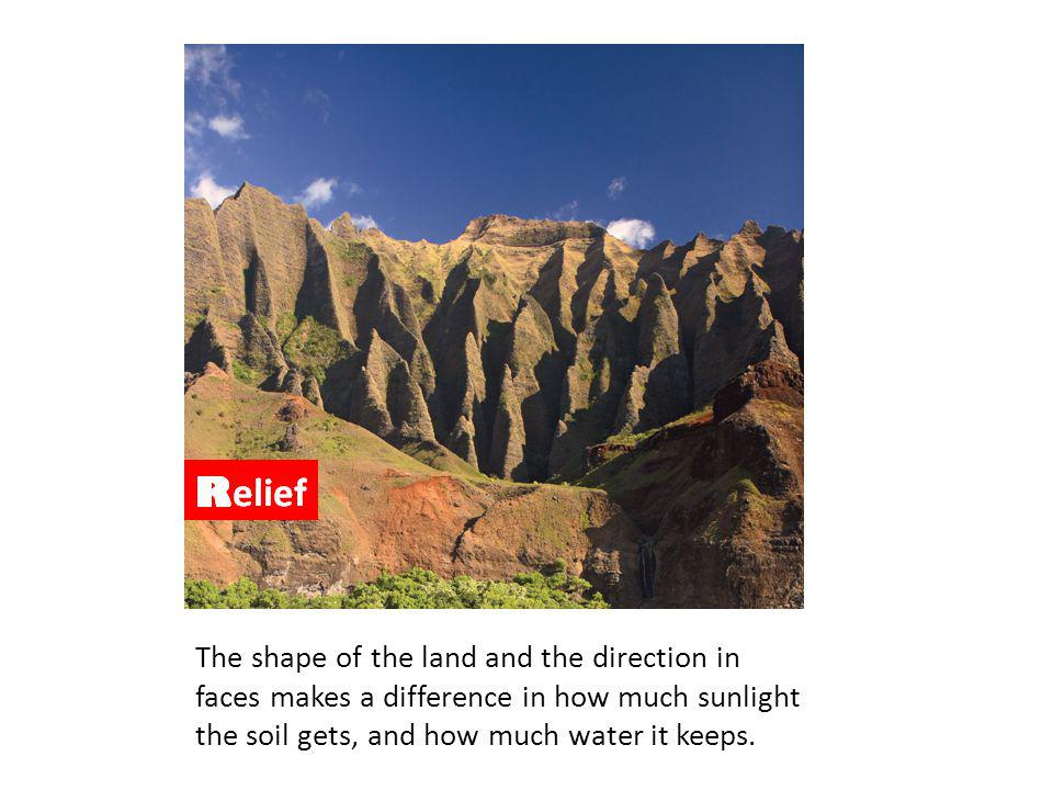 Relief – Shape and aspect (where the surface faces) affect the soil development. Steep slopes show less development as they are likely to erode and are unstable. South facing slopes in the northern hemisphere will show more development as they are warmer.
