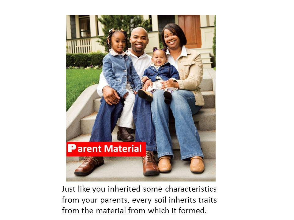 Parent Material Just like you inherited some characteristics from your parents, every soil inherits traits from the material from which it formed.