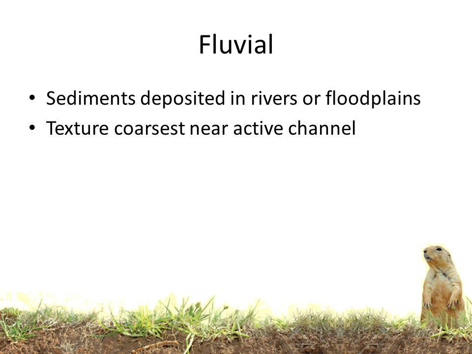 Fluvial Sediments deposited in rivers or floodplains