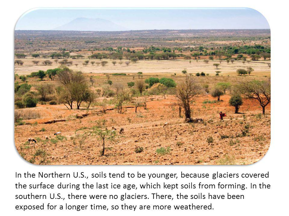 Soils in the northern US and Canada are younger as compared to those in the Southeast.