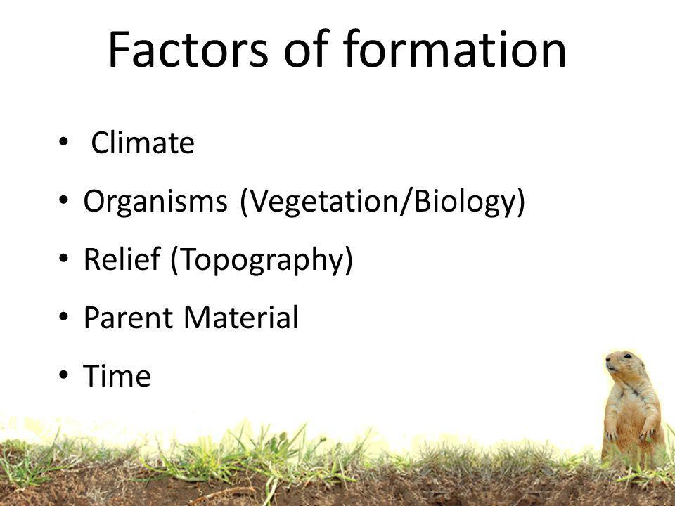 Factors of formation Climate Organisms (Vegetation/Biology)
