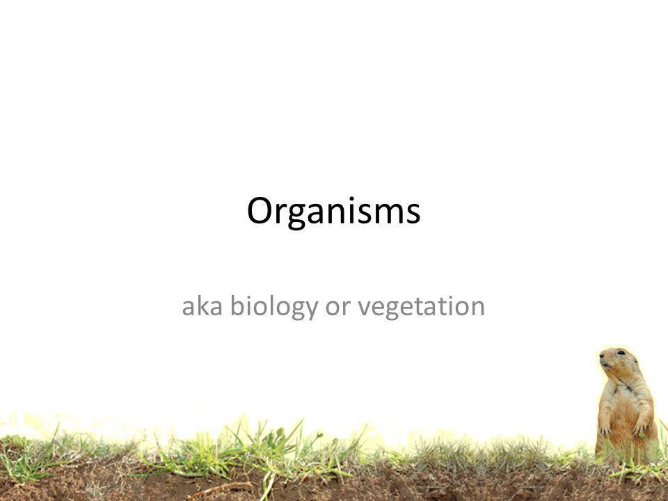 aka biology or vegetation
