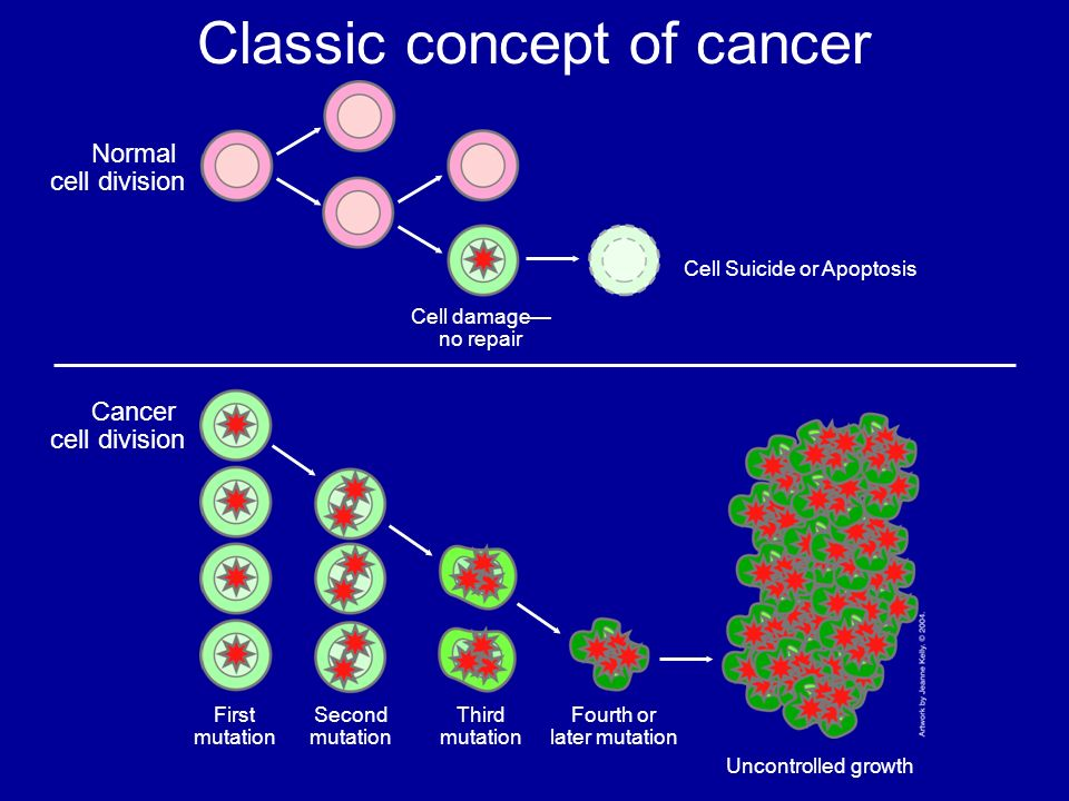 Classic concept of cancer