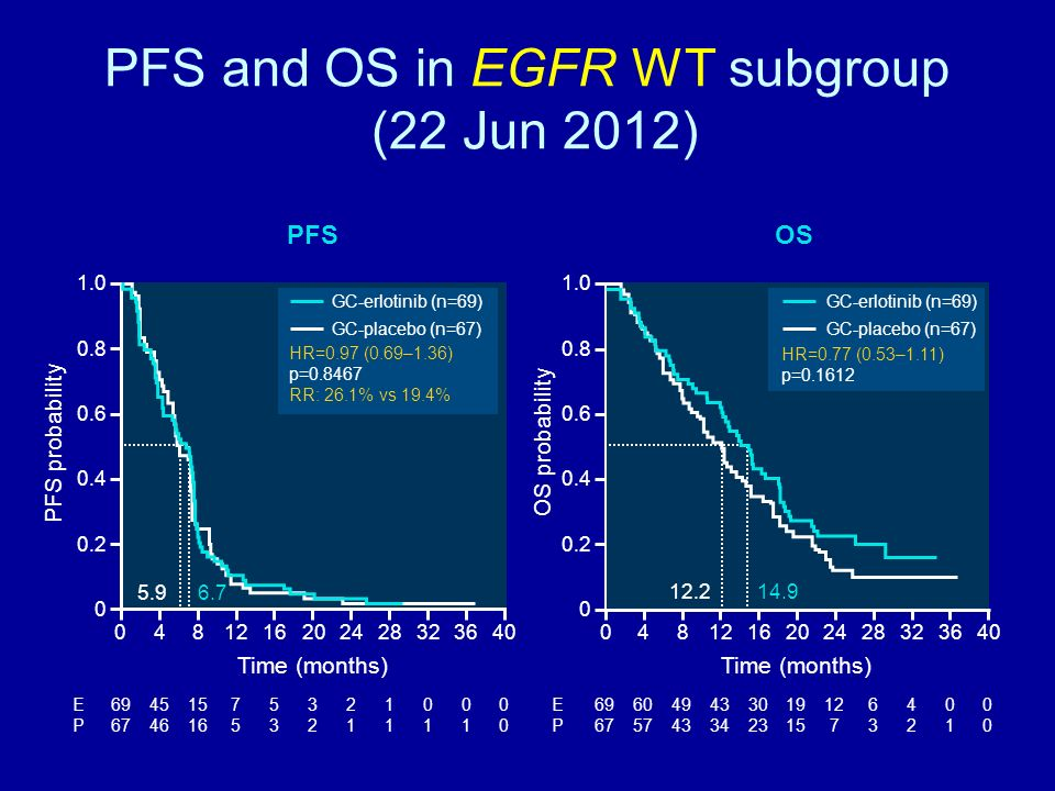 PFS and OS in EGFR WT subgroup (22 Jun 2012)