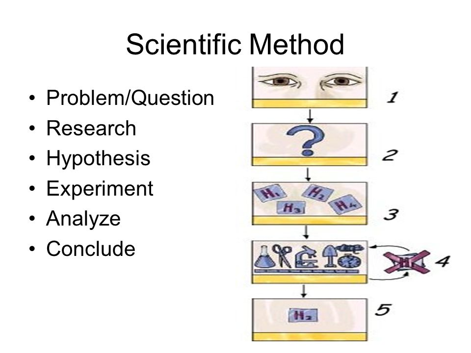 Scientific Method Problem/Question Research Hypothesis Experiment