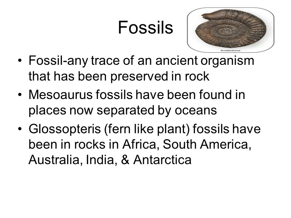 Fossils Fossil-any trace of an ancient organism that has been preserved in rock. Mesoaurus fossils have been found in places now separated by oceans.