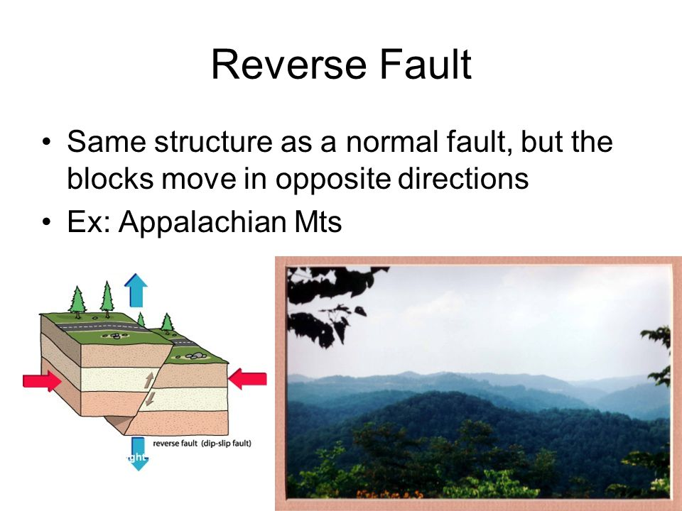 Reverse Fault Same structure as a normal fault, but the blocks move in opposite directions.