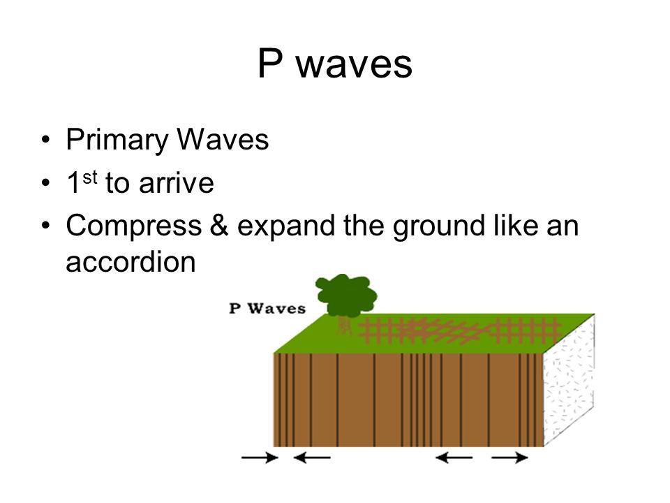 P waves Primary Waves 1st to arrive