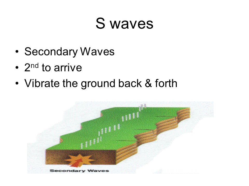 S waves Secondary Waves 2nd to arrive Vibrate the ground back & forth
