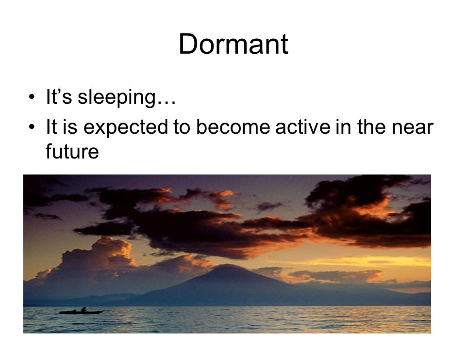 Dormant It's sleeping…