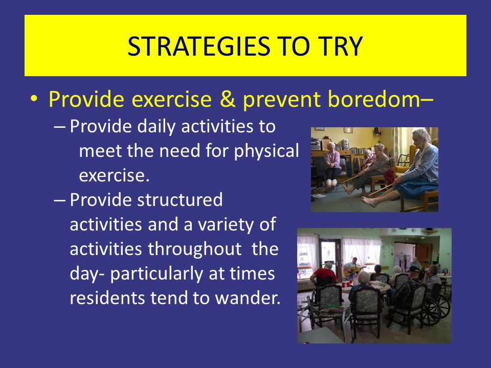 STRATEGIES TO TRY Provide exercise & prevent boredom–
