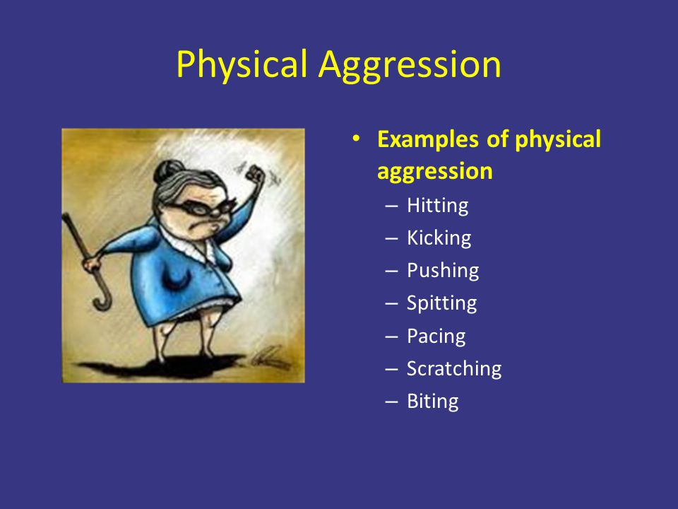 Physical Aggression Examples of physical aggression Hitting Kicking