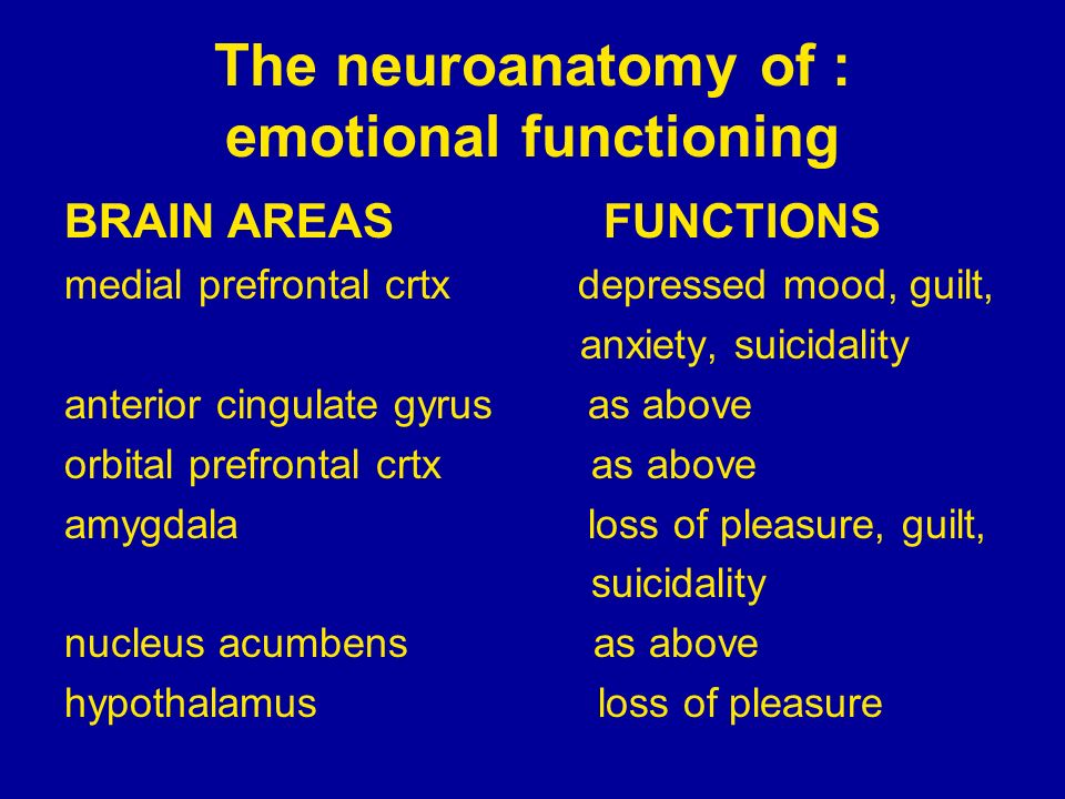 The neuroanatomy of : emotional functioning