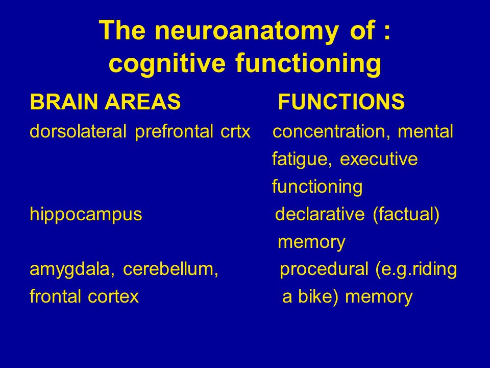 The neuroanatomy of : cognitive functioning