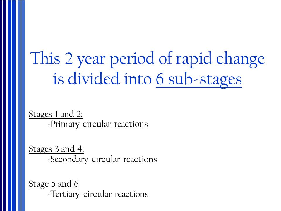 This 2 year period of rapid change is divided into 6 sub-stages