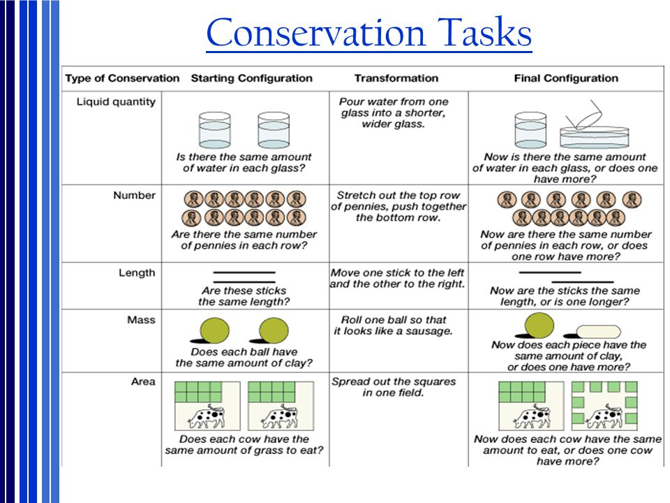 Conservation Tasks