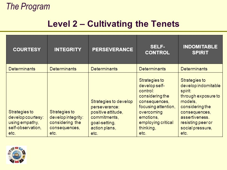 Level 2 – Cultivating the Tenets