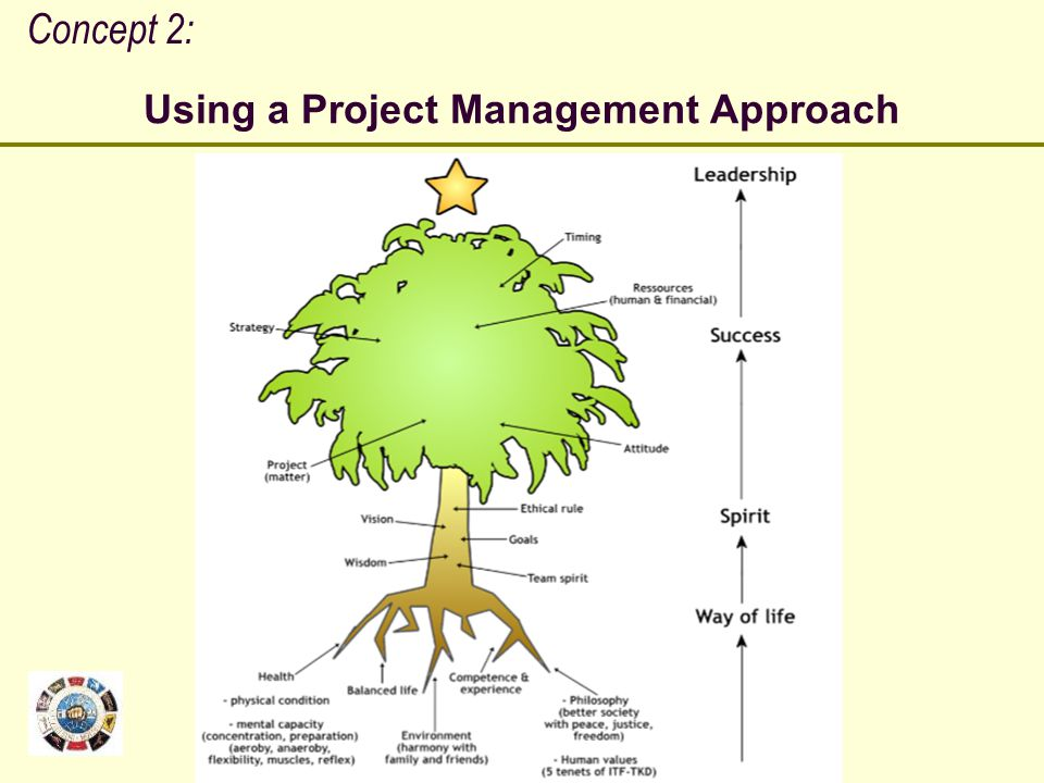 Using a Project Management Approach