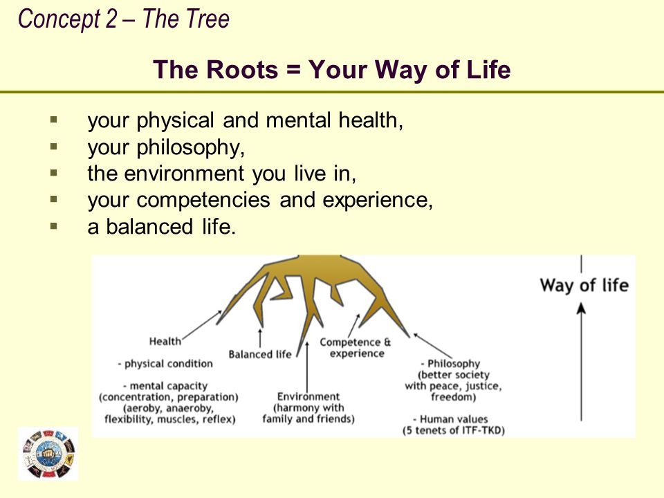 The Roots = Your Way of Life