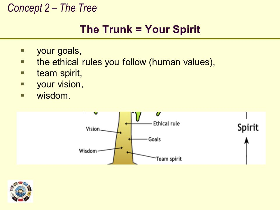 Concept 2 – The Tree The Trunk = Your Spirit your goals,