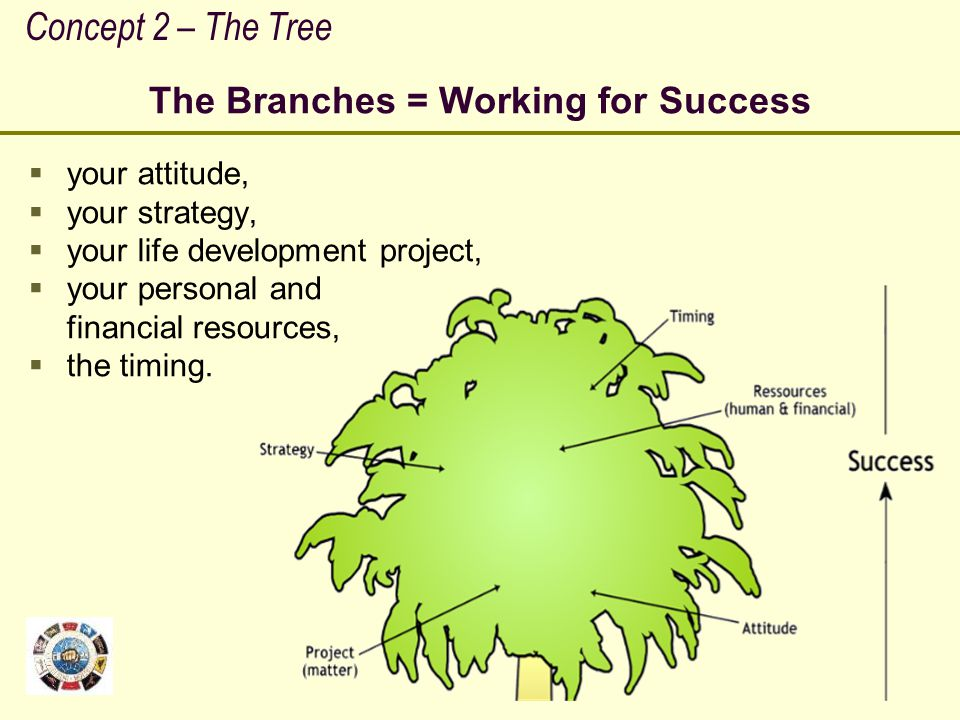 The Branches = Working for Success