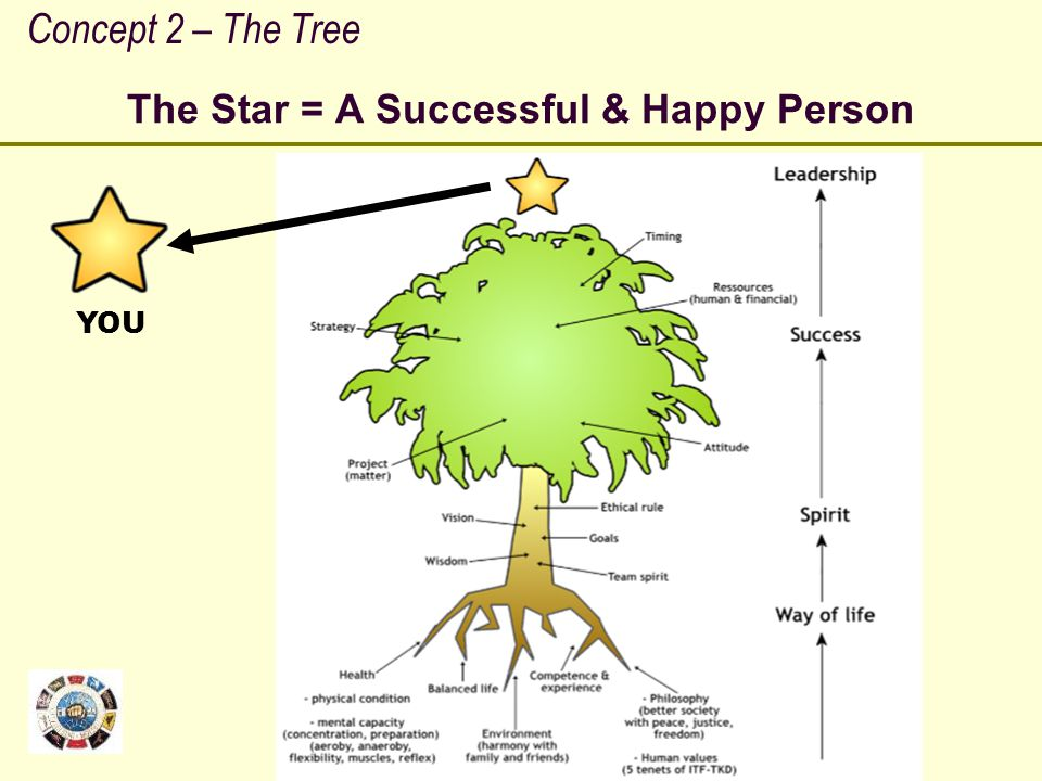 The Star = A Successful & Happy Person