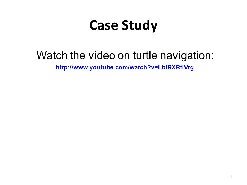 Watch the video on turtle navigation: