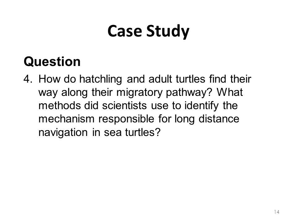 Case Study Question.