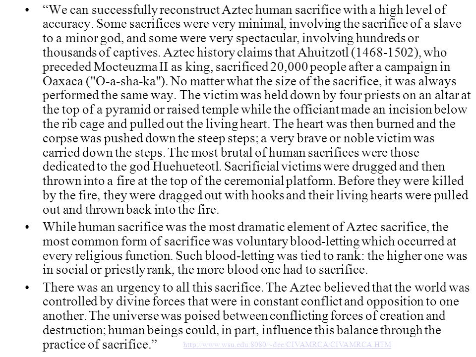 We can successfully reconstruct Aztec human sacrifice with a high level of accuracy. Some sacrifices were very minimal, involving the sacrifice of a slave to a minor god, and some were very spectacular, involving hundreds or thousands of captives. Aztec history claims that Ahuitzotl (1468-1502), who preceded Mocteuzma II as king, sacrificed 20,000 people after a campaign in Oaxaca ( O-a-sha-ka ). No matter what the size of the sacrifice, it was always performed the same way. The victim was held down by four priests on an altar at the top of a pyramid or raised temple while the officiant made an incision below the rib cage and pulled out the living heart. The heart was then burned and the corpse was pushed down the steep steps; a very brave or noble victim was carried down the steps. The most brutal of human sacrifices were those dedicated to the god Huehueteotl. Sacrificial victims were drugged and then thrown into a fire at the top of the ceremonial platform. Before they were killed by the fire, they were dragged out with hooks and their living hearts were pulled out and thrown back into the fire.