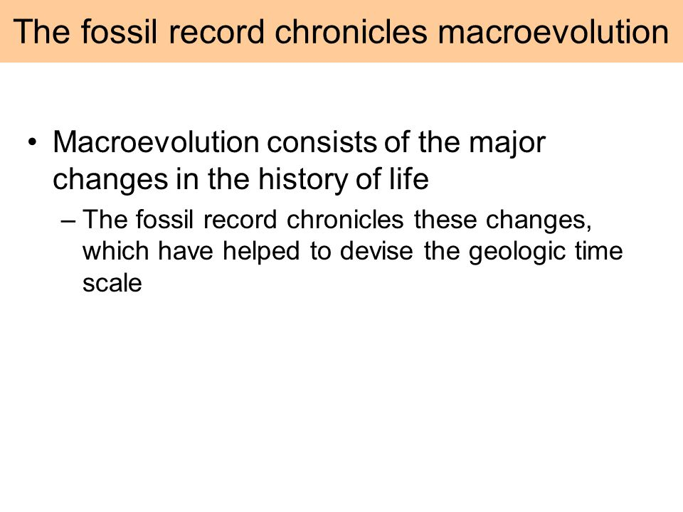 The fossil record chronicles macroevolution
