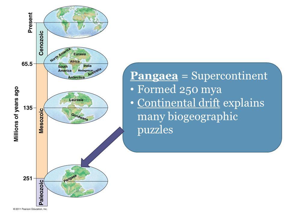 Pangaea = Supercontinent