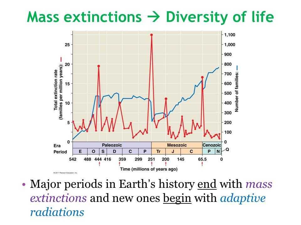 Mass extinctions  Diversity of life