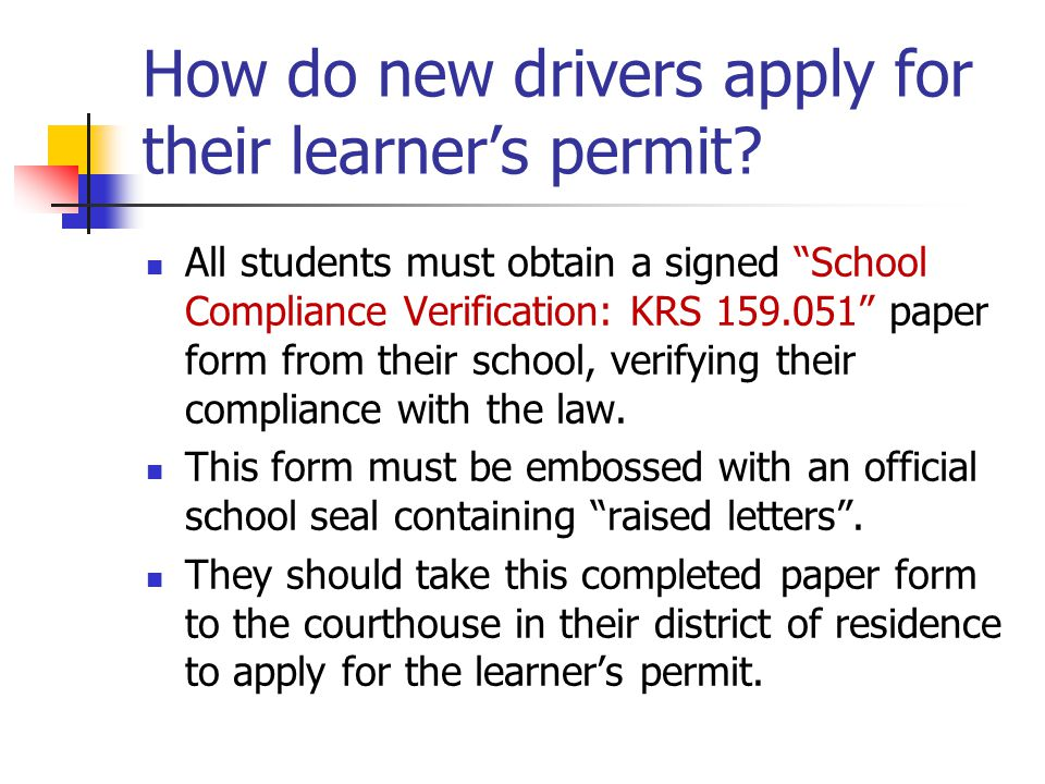 How do new drivers apply for their learner's permit